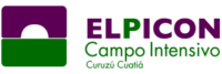 logo-elpicon